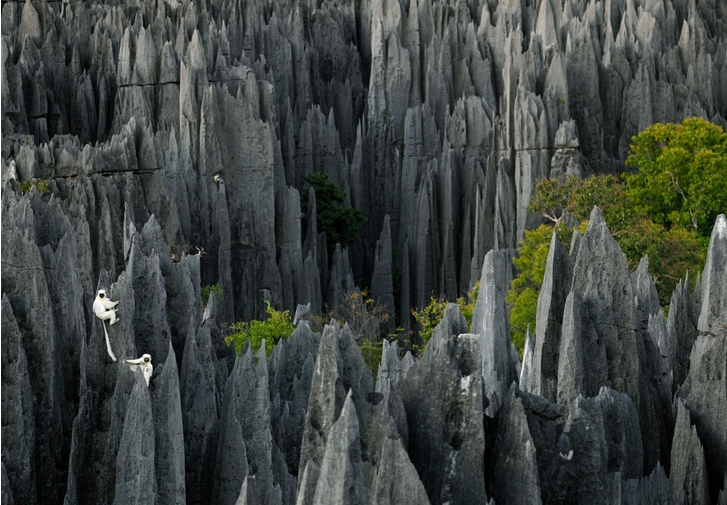surreal places: Tsingy de Bemaraha , a ' stone forest ' in Madagascar