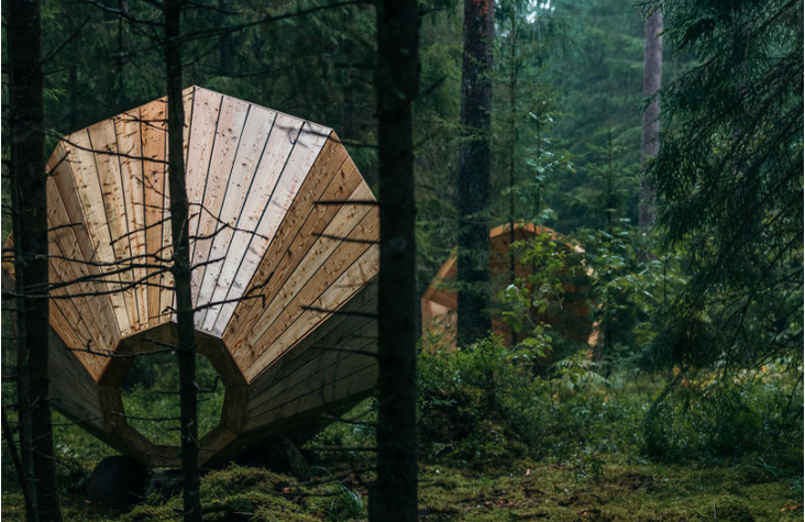 The incredible sound of nature listen inside a big wood speaker