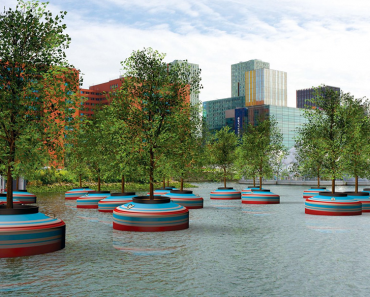 amazing floating forest rotterdam - incredible urban design