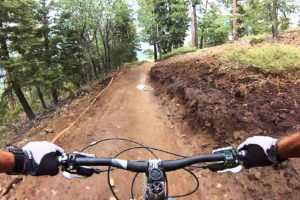 Video incredibile di orso insegue ciclista in mountain-bike